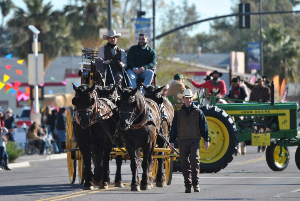 Cattle Drive Parade